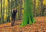 Plener fotograficzny w lasach krasnobrodzkich - rez. Św. Roch