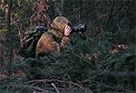 Plener w  lasach zwierzynieckich Roztoczańskiego Parku Narodowego
