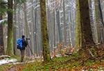 Na szlaku z Szewni do Wojdy - Roztoczański Park Narodowy
