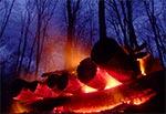 Roztoczańskie ognisko