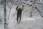 Lawina leśna - Rezerwat Czerkies