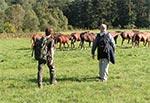 Nie do wiary ale tak kiedyś wyglądały pastwiska przy Niwkach Horynieckich. Obecnie jest tam istny busz.  Na zdjęciu Tomek i Piotrek