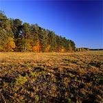 Łąki Dahanów jesienią