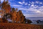 Dolina Wieprza o świcie w okolicach Bondyrza