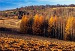 Krajobraz jesienny Roztocza Szczebrzeszyńskiego