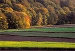 Jesienny krajobraz Działów Grabowieckich - między Łaziskami a Dębowcem