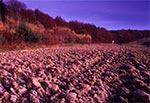 Pola wsi Kosobudy w świetle wieczornej zorzy