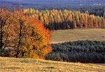 Pola wsi Senderki