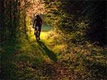 Rowerem przez Krasnobrodzki Park Krajobrazowy
