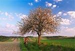 Wiosna na Roztoczu
