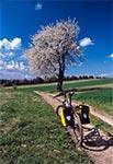 Rowerowa wiosna na Roztoczu