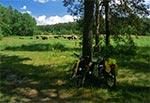 W Krasnobrodzkim Parku Krajobrazowym