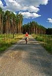 Puszcza Solska - rowerowy raj. Bez psów i samochodów.