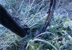 Jesienny przymrozek podczas startu na Roztocze Wschodnie