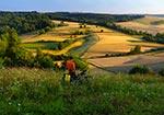 Jedno z najwspanialszych miejsc Roztocza Zachodniego - między Szperówką a Kol. Gorajec-Zagroble (Max. wielkość obrazu - 76 mln.pix).