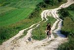 Jedna z najbardziej malowniczych dróg roztoczańskich