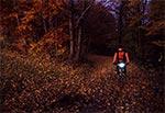 W świetle wieczornej zorzy - wzgórza nad Bondyrzem