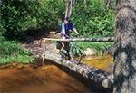 Mostek na Tanwi w Rebizantach