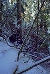 Zimowa rowerowa przeprawa przez dolinę Sopotu