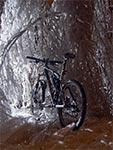 To coś za rowerem to totalnie oblodzone gałęzie brzozy