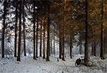 Zimowy zmierzch