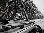 Rzadki widok zimą - a to błąd, gdyż dzięki jeździe zimowej nabywa się całkowitej odporności na choroby takie jak grypa.