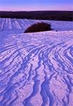 Zima na polach Obroczy