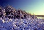 Zimowa idylla w rezerwacie Kąty