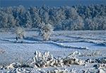 Wzniesienia Urzędowskie w pełni zimy