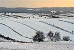 Roztoczańskie pola zimą - Suchowola