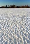 Ciekawa faktura śniegu na Roztoczu Szczebrzeszyńskim - na skraju zachodnim
