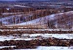 Zima u kresu - pola w okolicach wsi Suchowola
