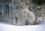 Zima w okolicach wsi Rachodoszcze
