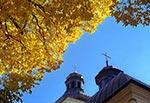 Kościół Narodzenia Najświętszej Maryi Panny w Narolu