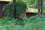 Cerkiew drewniana w Żmijowiskach
