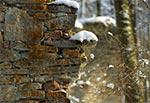 Roztocze Środkowe - ruiny Papierni w Hamerni