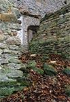 Ruiny cerkwi w Lubyczy Królewskiej - Kniazie