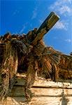 Ruina stodoły krytej strzechą w Wólce Horynieckiej