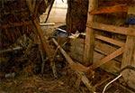 We wnętrzu stodoły krytej strzechą - Wólka Horyniecka