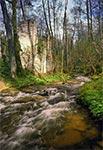 Ruiny papierni koło Hamerni wczesną wiosną