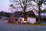 Zrujnowane gospodarstwo w Guciowie