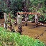 Ruina mostu przy brodzie Karczmisko na potoku Sopot. Była tu karczma, a później leśniczówka. Zachowała się jeszcze bita droga prowadząca do tego mostku