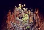 Ruina cegielni między Teodorówką a Abramowem. W strefie krawędziowej na Roztoczu Gorajskim było więcej cegielni, a cegły wypalano tam z iłów krakowieckich (wielkość oryginalnego pliku 50 mln pix)