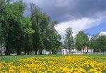 Kwitnąca łąka przed pałacem Łosiów w Narolu