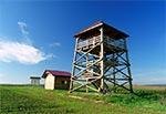 Wieża widokowa nad Hosznią Ordynacką