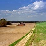 Stodoła dawnego PGR-u na południe od Łówczy