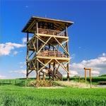Wieża widokowa między miejscowościami Lipsko-Polesie a Rachodoszcze. Można z niej dostrzec pobliskie cmentarzysko kurhanowe oraz kapliczkę św. Romana nad źródłem. Jest to jedna z nielicznych wież widokowych umieszczonych w rzeczywiście atrakcyjnym widokowo miejscu