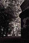 Otoczenie cerkwi w Starym Dzikowie