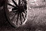 Stare koło - wykonał je nasz dziadek. Wytwarzał właściwie cały sprzęt w gospodarstwie, poza elementami metalowymi. Łącznie z budową domu oczywiście