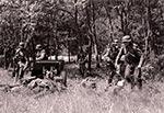 Inscenizacja historyczna bitwy w Zielonem pod Krasnobrodem
